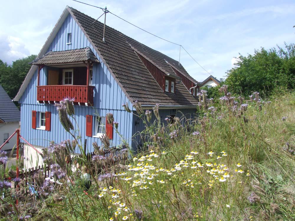 Ein Haus erwacht aus dem Dornröschenschlaf