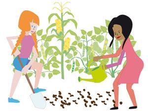 Zwei Frauen gärtnern. säen und gießen Mais, Sonnenblumen und Bohnen